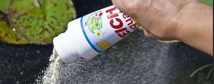 Использование бактериальных препаратов очистки пруда